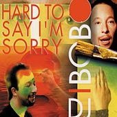Hard to Say I'm Sorry by DJ Bobo