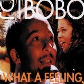 What a Feeling by DJ Bobo