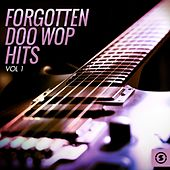 Forgotten Doo Wop Hits, Vol. 1 von Various Artists