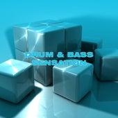 Drum & Bass Sensation by Various Artists