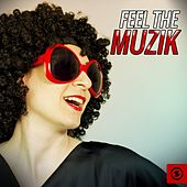 Feel the Muzik by Various Artists