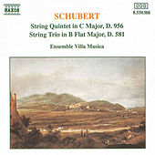 String Quintet in C Major / String Trio in B Flat Major by Franz Schubert
