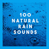 100 Natural Rain Sounds by Various Artists