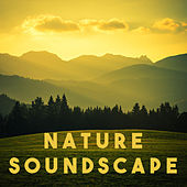 Nature Soundscape by Various Artists