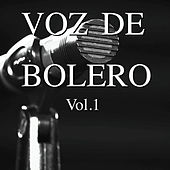 Voz de Bolero Vol. 1 by Various Artists