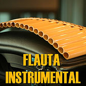 Flauta Instrumental by Marc Ross