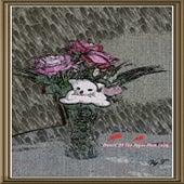 Dance of the Sugar Plum Fairy - Single by Vig T