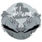 Deshacer by Conejo