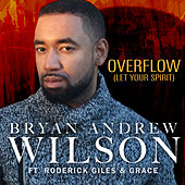 Overflow by Bryan Andrew Wilson