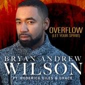 Overflow by Bryan Andrew Wilson