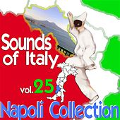 Sounds of Italy: Napoli Collection, Vol. 25 by Various Artists