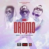 Grace Dromo (feat. El & Shatta Wale) by Gemini