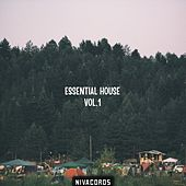 Essential House, Vol. 1 by Various Artists