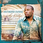 The Bridge by Anthony Evans