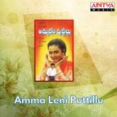 Amma Leni Puttillu (Original Motion Picture Soundtrack) by Various Artists