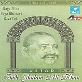Classical Vocal, Vol. 2 by Ustad Bade Ghulam Ali Khan
