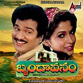Brundaavanam (Original Motion Picture Soundtrack) by Various Artists