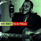 Have Mercy! by Big Joe Williams