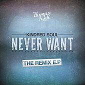 Never Want -  Remixes by Kindred Soul