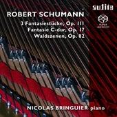 Robert Schumann: Fantasie C-dur, Waldszenen, 3 Fantasiestücke by Nicolas Bringuier