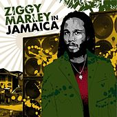Ziggy Marley in Jamaica by Various Artists