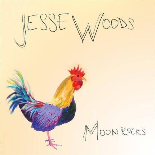 Moon Rocks by Jesse Woods
