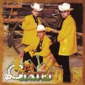 Escuché Las Golondrinas by Los Cuates De Sinaloa