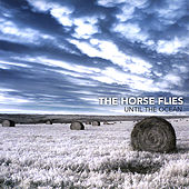 Until the Ocean by Horse Flies