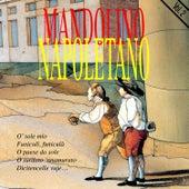 Mandolino Napoletano by Luciano Manacore
