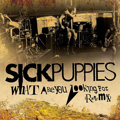 What Are You Looking For (Radio Mix) by Sick Puppies