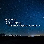 Relaxing Crickets Summer Night at Georgia by Acerting Art