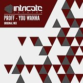 You Wanna by Proff