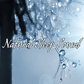 Natural Sleep Sound by Various Artists