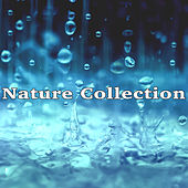 Nature Collection by Various Artists