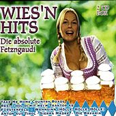 Wies'n Hits by Various Artists