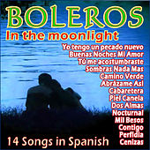 Boleros a la Luz de la Luna by Various Artists