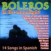 Boleros a la Luz de la Luna by Various Artists