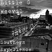 Southern Experience by Little G Weevil