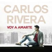 Voy a Amarte by Carlos Rivera