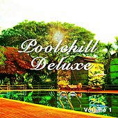Poolchill Deluxe, Vol. 1 by Various Artists