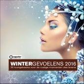 Wintergevoelens 2016: 30 loungetracks voor de rustige momenten des levens by Various Artists