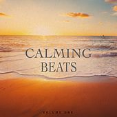 Calming Beats, Vol. 1 (Awesome Chilled Electronic Music) by Various Artists