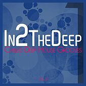 In2 the Deep - Chilled Deep House Grooves 2 by Various Artists