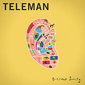 Brilliant Sanity by Teleman