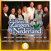 De Beste Zangers van Nederland Seizoen 8 by Various Artists