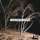 Narrows by Narrows