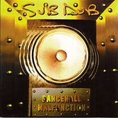 Dancehall Malfunction by Sub Dub