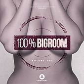 100% Bigroom, Vol. 1 by Various Artists