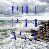 Nature Rain & Waves by Various Artists