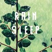 Rain Sleep by Various Artists